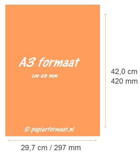 A3 formaat cm mm